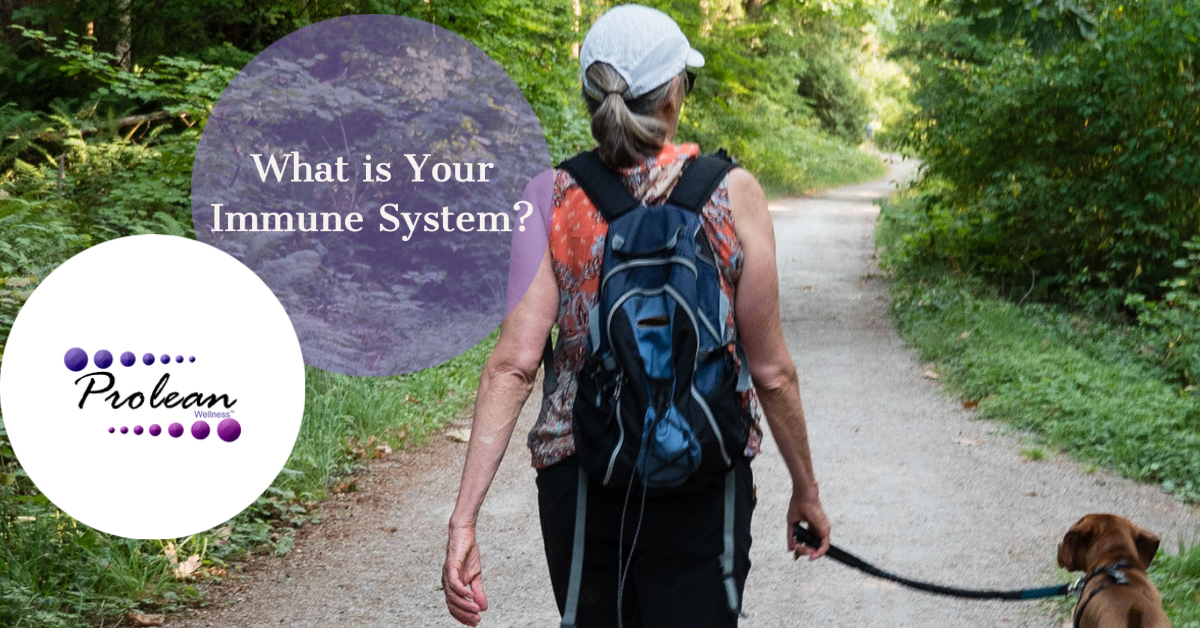 What is Your Immune System?-3